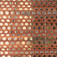 Cupro Nickel Perforated Sheets
